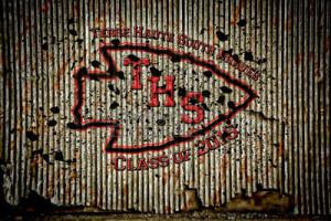 THS-Grunge-class-of-2016-1-sm1
